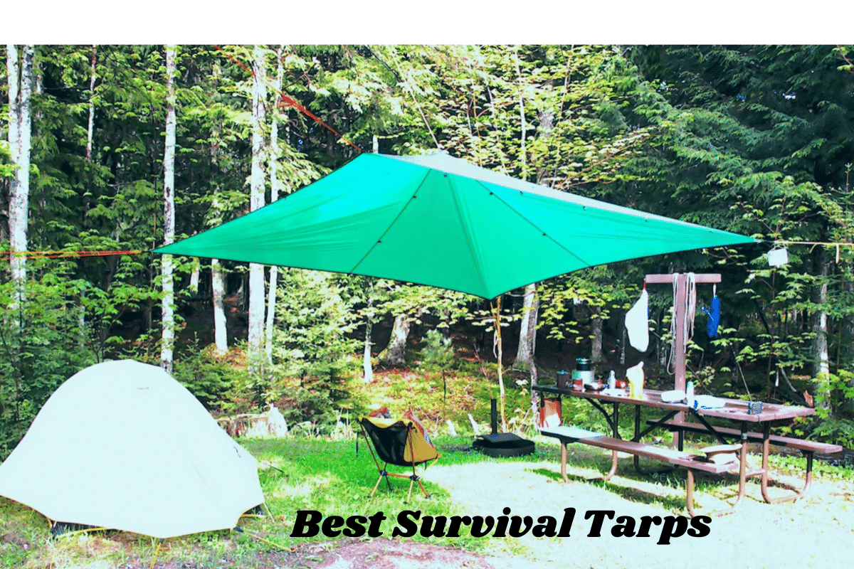 This is a photo of Best Survival Tarps